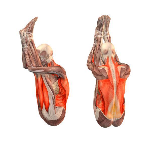 Upward facing intense stretch - Urdhva Mukha Paschimottanasana - Yoga Poses | YOGA.com