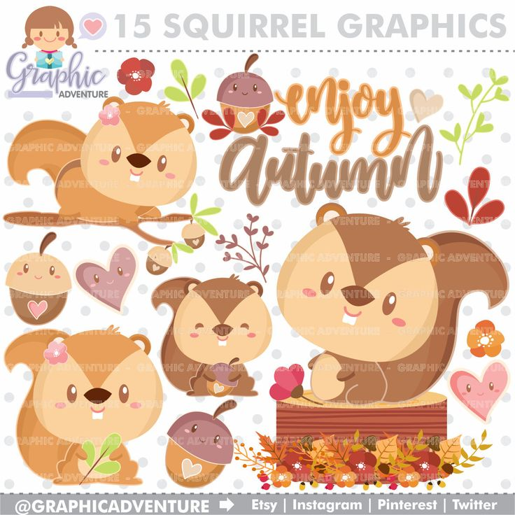 75%OFF - Squirrel Clipart, COMMERCIAL USE, Fall Clipart, Autumn Clipart, Kawaii Clipart, Woodland Clipart, Squirrel Graphics, Autumn Party