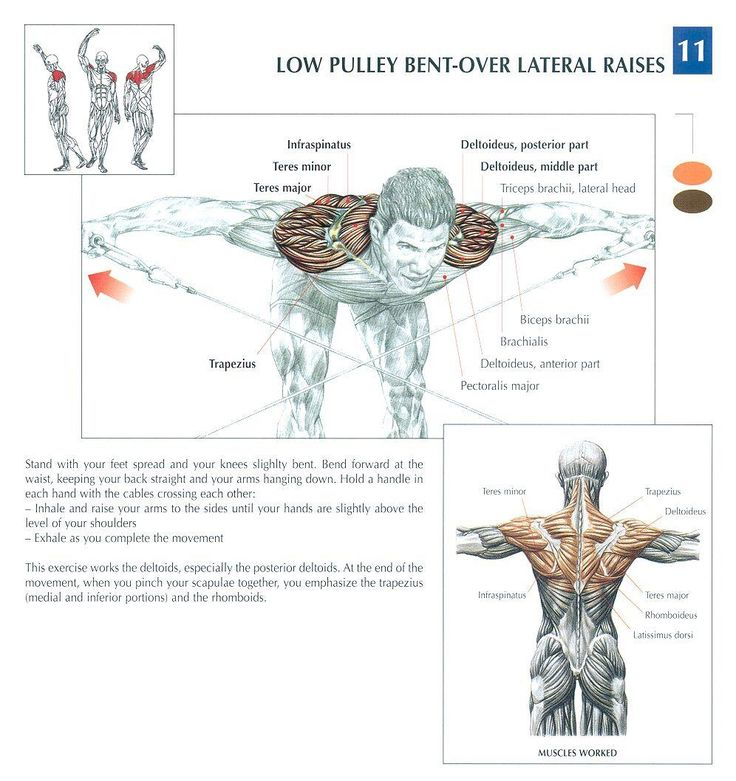 261 best OT- Exercise images on Pinterest   Physical therapy ...