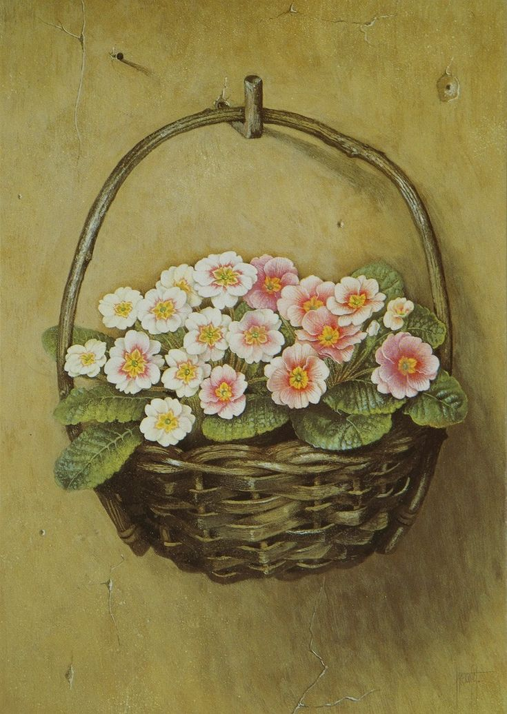 Jose Escofet (b. 1930) — Pink Polyanthus Hanging from a Wall, 1989  (800x1127)