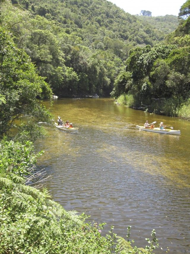 Rowing at Ebb & Flow near Wilderness.   South Africa.