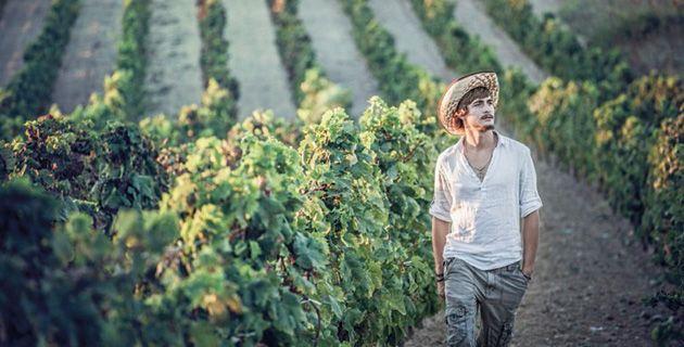 Sardinien hat eine beeindruckende Wende vom Massenproduzenten zu einer der Top-Weinregionen hingelegt. Einige der gefragtesten Flaggschiff-Weine Italiens kommen hier her.