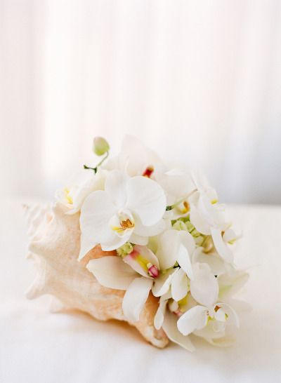 Beach Wedding Decor....large conch shell w florals..I would add this to cylinder candles for the pop of floral on the table. Maybe spray some gold on the shell!