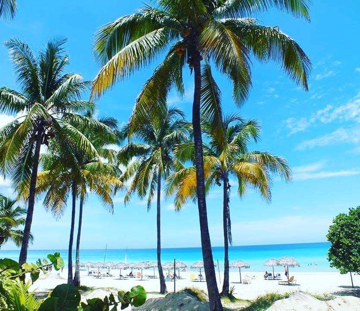 Kto wybiera się na plażę? #plaża #beach #summer #summertime #tropical #podróż #podróże #wakacje #tropical #traveler #traveluje #travelpic #travellife #travelplanet