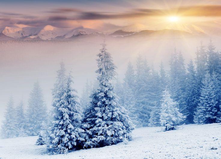Скачать обои зима, снег, горы, природа, елки, солнечные лучи, раздел природа в разрешении 7492x5385