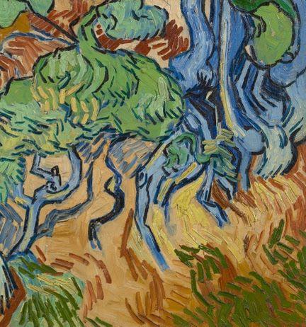 Boomwortels - Van Gogh