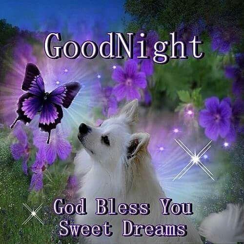 Good Night!