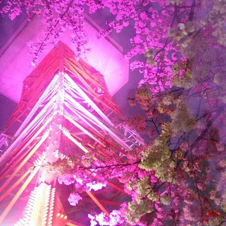 雨降って心配だったけどなんとかもってます ピンク色の宇都宮タワー  #八幡山公園#花見#夜桜#さくら#cherryblossom#宇都宮タワー#ライトアップ#ピンク###タワー#宇都宮 by midori.05.09.10 via Instagram w/ifttt