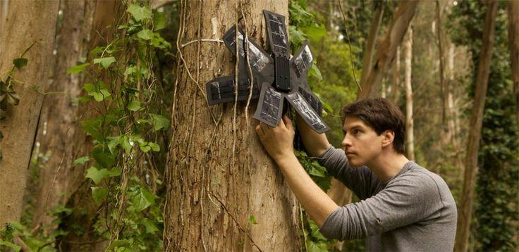 Stworzony przez Tophera White'a system Rainforest Connection pomoże chronić amazońskie lasy deszczowe. Do jego powstania potrzeba było zaskakująco mało zaawansowanej technologii – ważniejsze były tu dwa elementy: pomysł i motywacja! http://exumag.com/rainforest-connection/