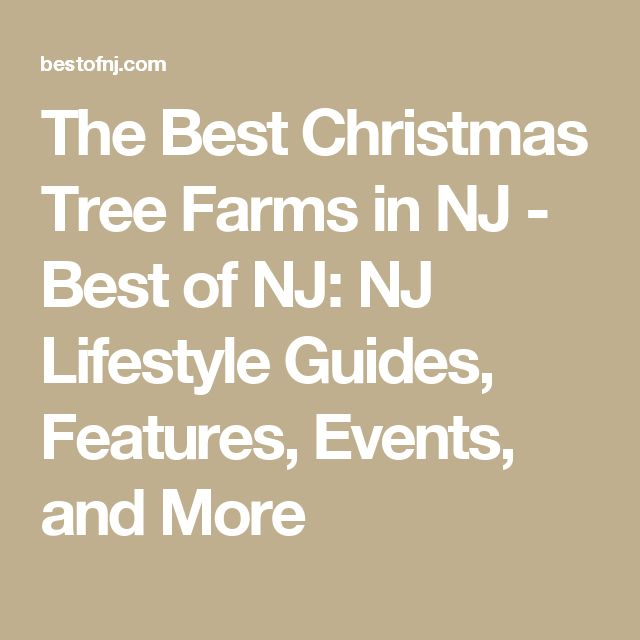 The Best Christmas Tree Farms in NJ - Best of NJ: NJ Lifestyle Guides, Features, Events, and More