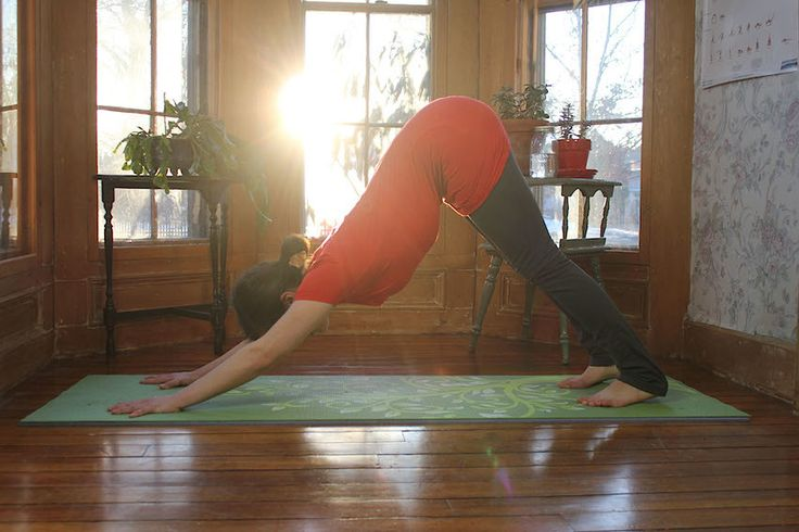Downward Facing Dog (Adho Mukha Svanasana)