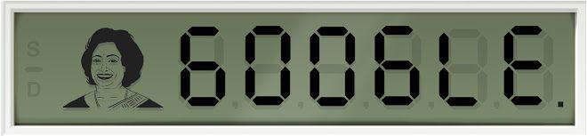 Google Doodle vom 04.11.2013 - 84. Geburtstag von Shakuntala Devi