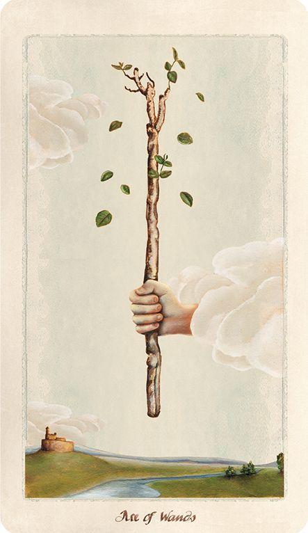 Ás de Paus Os Ases são sementes, de um modo geral, mas quando estamos no naipe de Paus, temos, muitas vezes, imagens de árvores frondosas, reafirmando ainda mais esta analogia de boa semente, árvore forte, bons frutos.