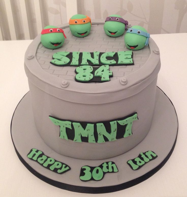 Teenage Mutant Ninja Turtle Cakes On Pinterest