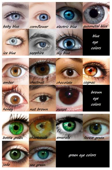 36 best images about Eye Color on Pinterest | Ruby red ...
