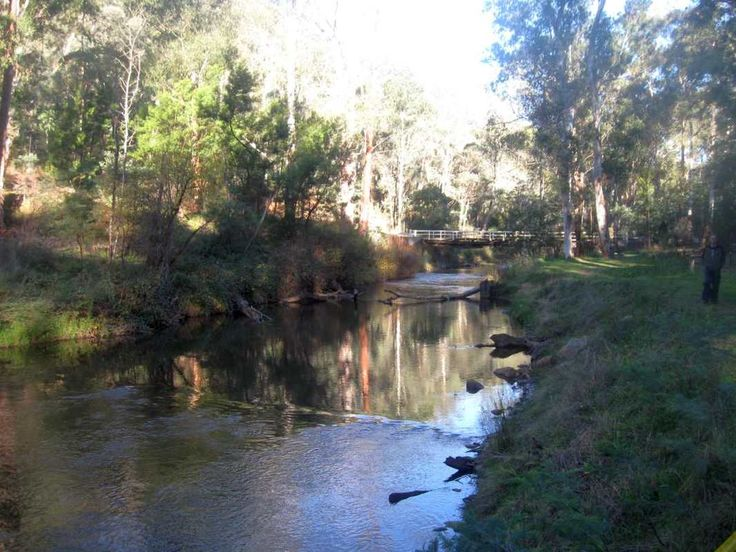 Visit - Victorian High Country – Buckland Valley #4X4 Destinations #4WD #4X4 Australia #Camping Spots #4Wding