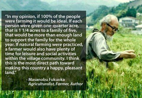 In my opinion, if 100% of the people were farming, it would be ideal. If each person were given one-quarter acre, that is 1 1/4 acres to a family of five, that would be more than enough land to support the family for the whole year. If natural farming were practiced, a farmer would also have plenty of time for leisure and social activities within the village community. I think this is the most direct path toward making this country a happy, pleasant land. ~Masanobu Fukuoka