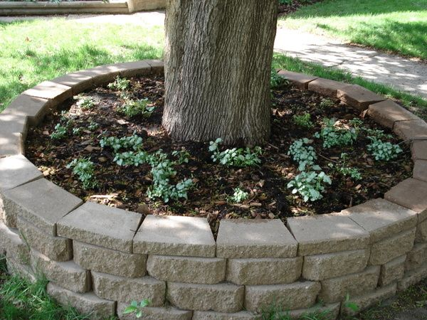 Tree Ring Planter Tree Planters Landscaping Around