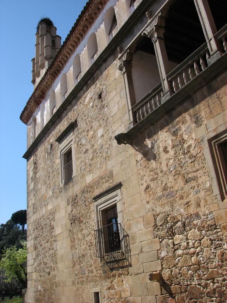 Palacio de los Manrique de Lara.