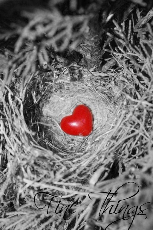 34 best empty nesters images on pinterest empty nest syndrome empty nest no matter how far they fly my heart goes with fandeluxe Ebook collections
