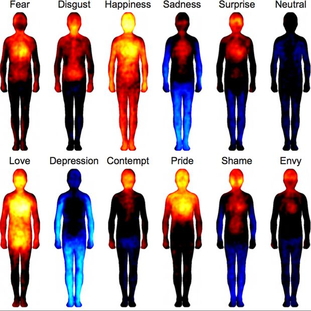 Study: body mapping reveals emotions are felt in the same way across cultures (Wired UK)