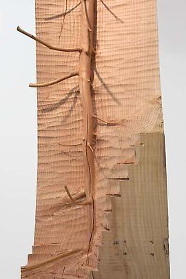 Giuseppe Penone #Nel legno