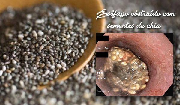 RENOVAÇÃO: MODERAÇÃO PESSOAL...Alerta: consumo de sementes de...