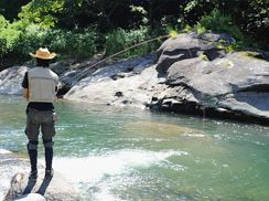 Visit the Jim Corbett National Park for an  audacious angling & fishing tour. #travel #corbettnationalpark