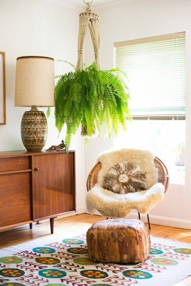 Boston Fern: These droopy plants may need a bit more care than the rest, but they give back the love by removing formaldehyde from the room and adding humidity to your home.