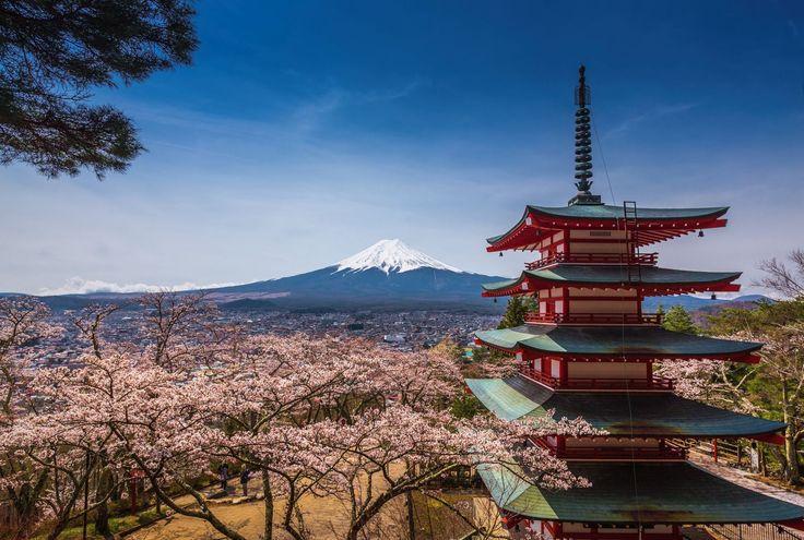 Kwalifikacje… Japonia 2016