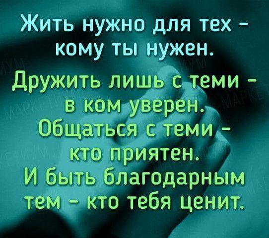 """Фотография Поговорки, афоризмы и шутки - Всегда к месту, всегда вовремя <a href=""""https://www.natr-nn.ru/blog/category/entertainment"""">Еще больше постеров</a>"""