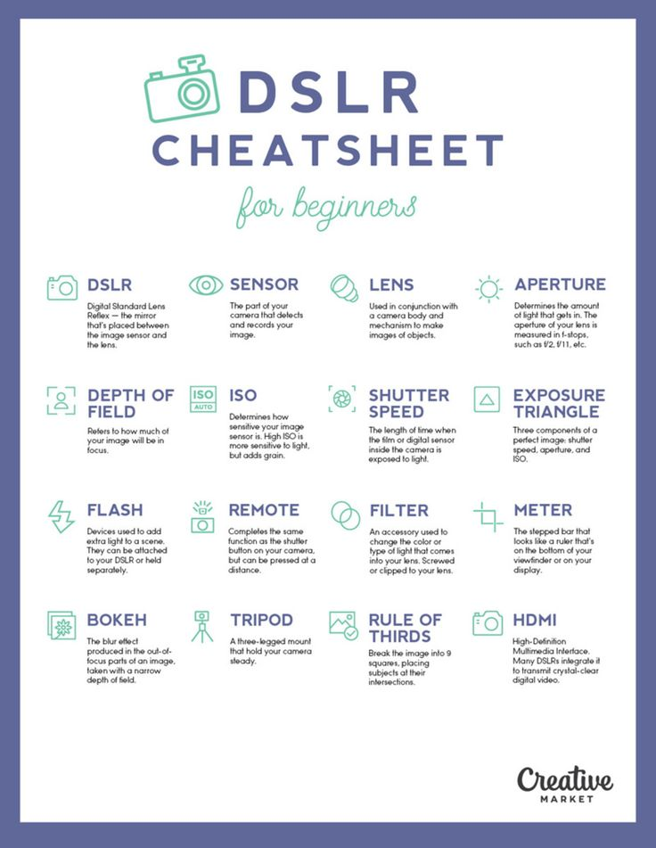 The Ultimate DSLR Cheat Sheet For Beginners - UltraLinx