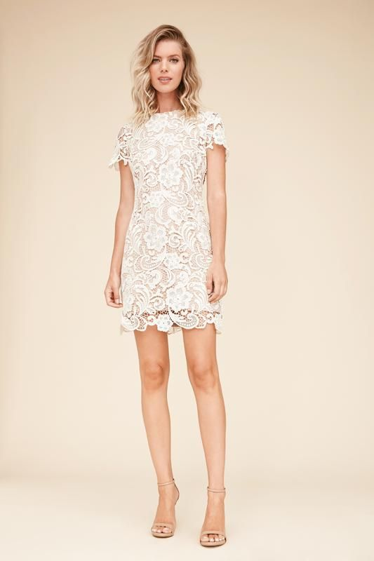 ac8d94fe Anna Crochet Lace Shift Dress in Ivory & Nude from DRESS THE POPULATION ~  Today's Fashion Item