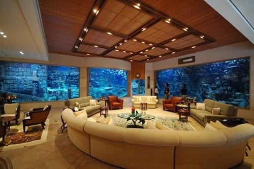 Rounded living room w/aquarium walls