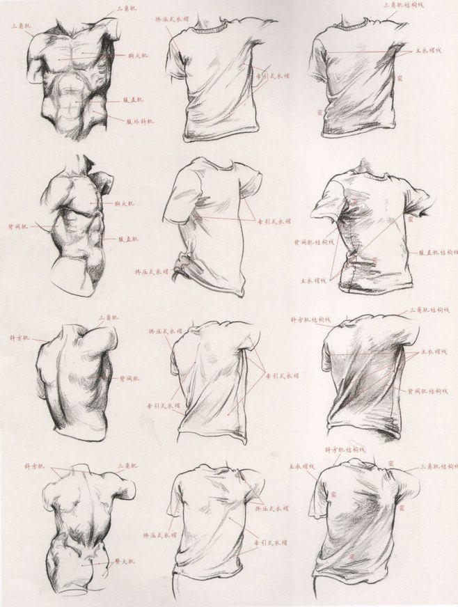 教你怎样用衣纹去表现人体结构 - 动漫教...@拙剑藏锋采集到人体结构(432图)_花瓣游戏
