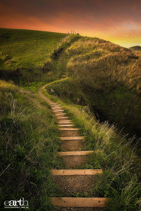 ~~Stairing at the Sun | Fleurieu Peninsula, Kings Beach, South Australia | by Ben Goode~~