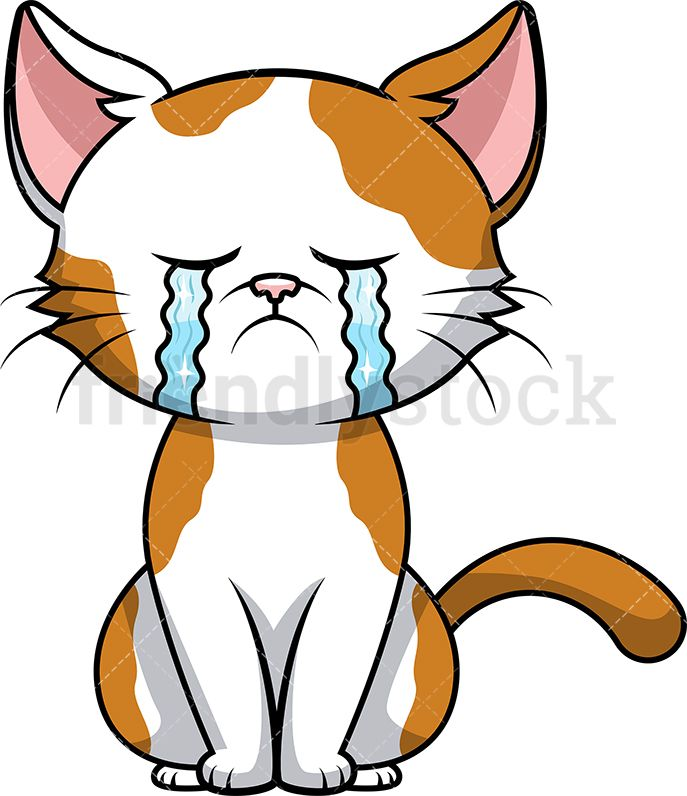 Crying Cat With Images Cartoons Vector Cartoon Illustration