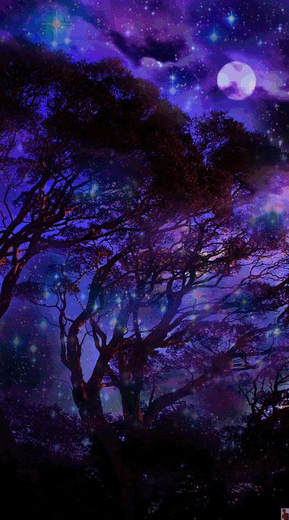starry night by pureblindingcolour