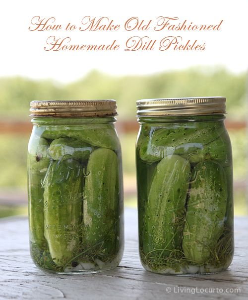 how to make refrigerator dill pickles from cucumbers