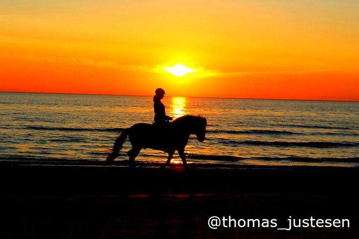 Sunset on the beach in Blokhus in Denmark! :) #freedom #nature #naturelovers #denmark #denmarklife #travel #traveling #travelgram #travelling #sunset #sunsets #sunset_madness #sunsetlovers #roadtrip #roadtrippin #roadtips #roadtripfun #traveltheworld #travelblog #travelbug #travelblogger #travelpics #travelphoto