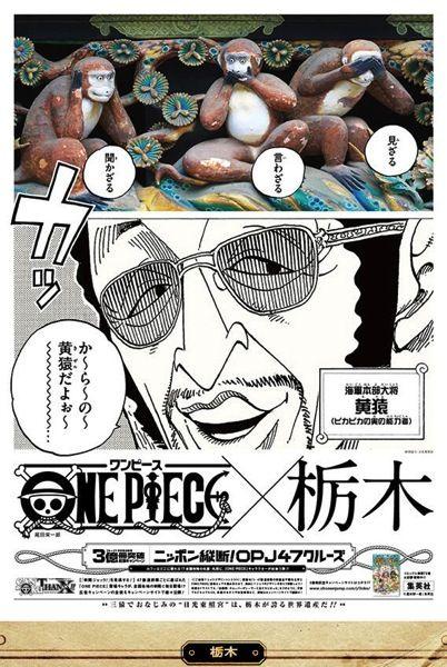 One Piece 栃木:黄猿