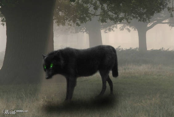 Black Shuck is the name of a ghost dog that roams Norfolk, Suffolk, and other parts of England. It is a large, black canine with flaming red or green eyes, or sometimes just one eye in the middle of its head. If those eyes catch your gaze directly, you are doomed to death within a year. There are various origin stories for the dog, which was first reported seen in 1577. Black Shuck may have been the inspiration for Arthur Conan Doyle's Hound of the Baskervilles.