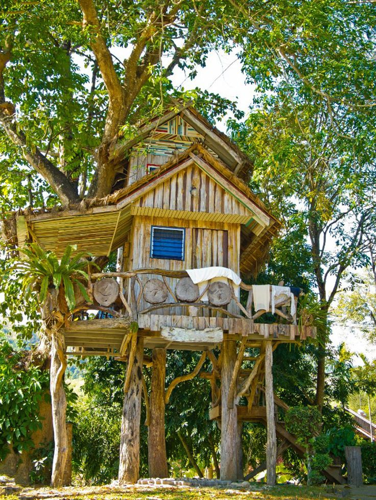 Kids Treehouse Inside 1306 best tree houses images on pinterest | treehouses, trees and