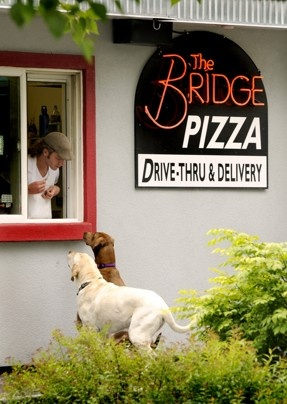 Dogs Bridger and Olive visit their favorite pizza drive-thru for a handout in Missoula, Mont. The two, pets of Bridge Bistro owners Dave McEwen and Shirley Juhl, are frequent visitors to the drive-thru.  Kurt Wilson / Missoulian via AP