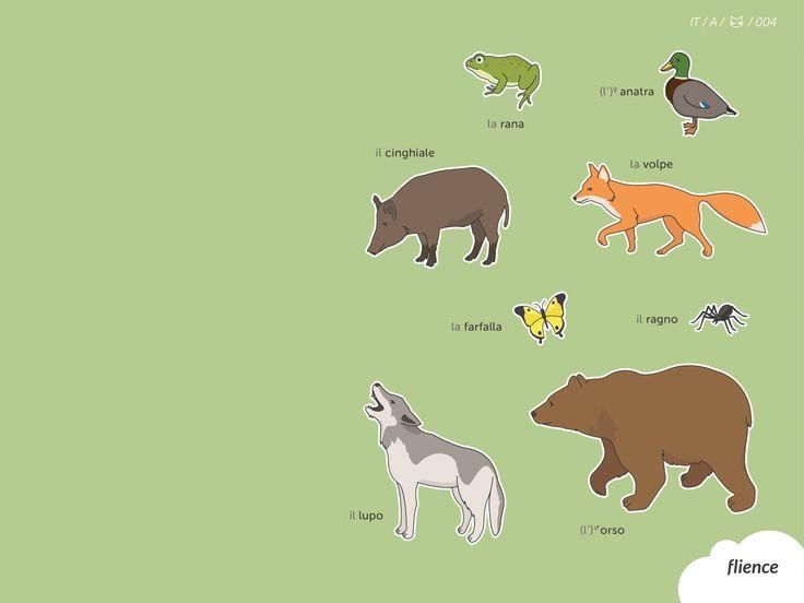 Animals-meadow_004_it #ScreenFly #flience #italian #education #wallpaper #language