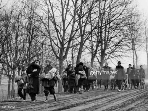 06-30 Picture released on February 19, 1945 of German families... #arbre: 06-30 Picture released on February 19, 1945 of German… #arbre