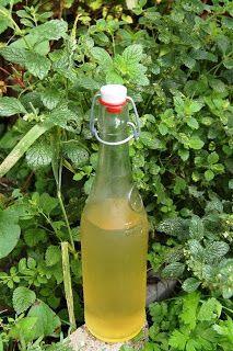 Kookstel - Een kokend stel: Limonade van citroenmelisse