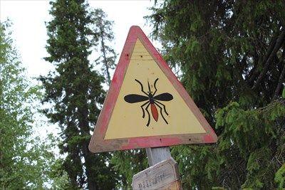 Mosquito warning in Tankavaara village, Sodankylä, Finland - Unusual Signs on Waymarking