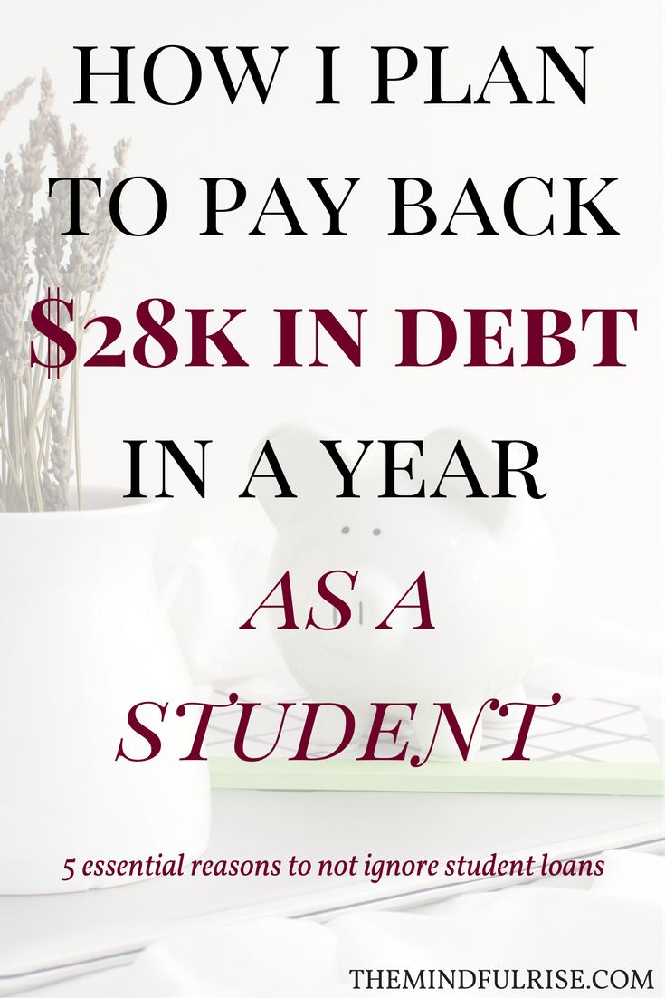 Student loans | debt| assets and net worth