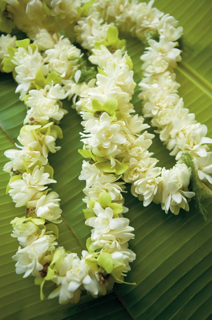 91 Best Hawaiian Leis Images On Pinterest Hawaiian Leis Clam